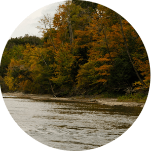 WNY Fall Fishing Season