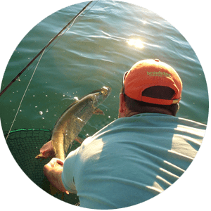 Great Lakes / Niagara River Guided Fishing Tours