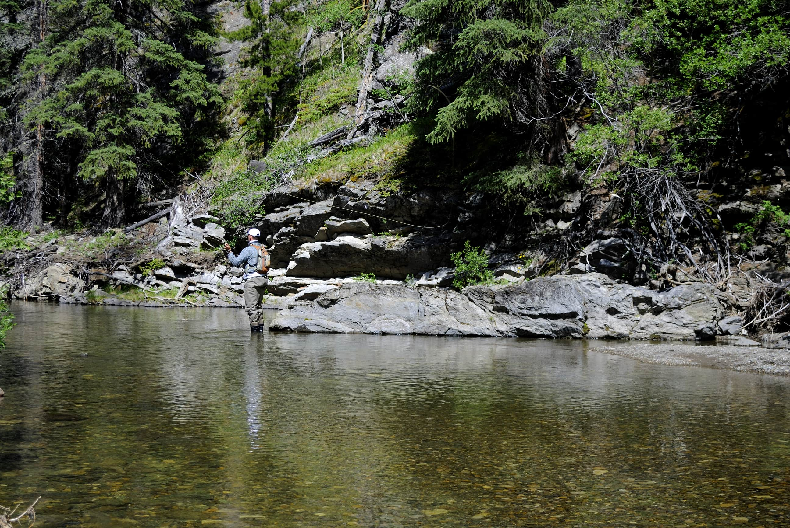 Fishing headwaters for cutthroat trout- head clearing stuff