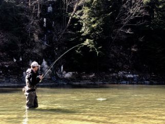 Mindfulness in Angling – a Momentary Lapse of Insanity