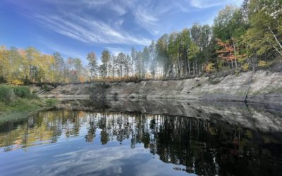 Tannic Water in Autumn – it Never Disappoints